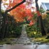2005-11-26_09-15.35__04066.jpg