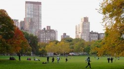 Central Park 中央公园