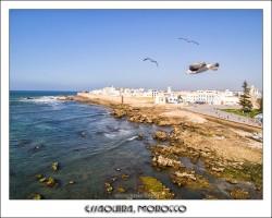 Essaouira 索维拉
