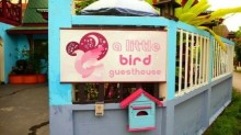 A Little Bird Guesthouse